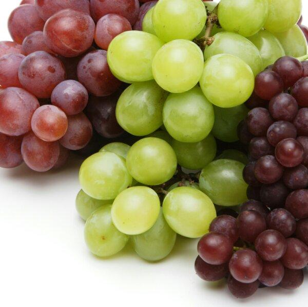 ブドウ品種は○種類?